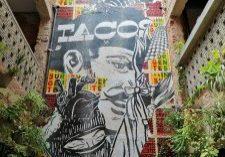 taco-1